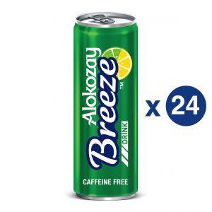 BREEZE REGULAR 355ML X CAN24